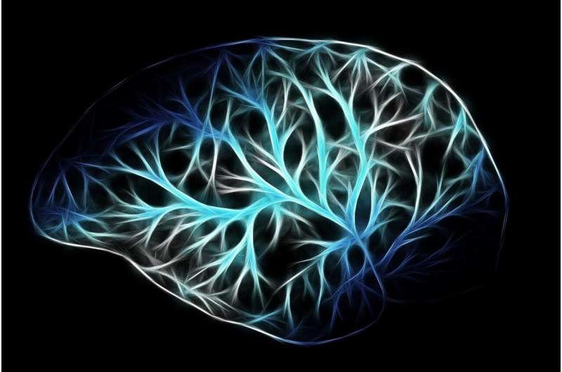 Preventing cell death in the brain calls for a new perspective on drug development